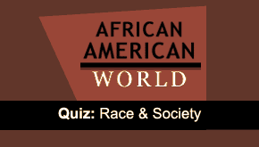 Brain Teaser: Race & Society