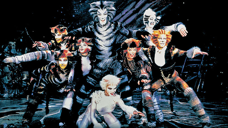 Great Performances: Cats!