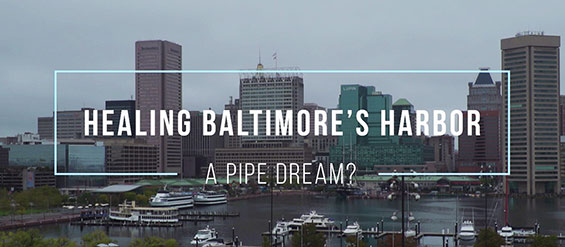 Healing Baltimores Harbor: A Pipe Dream?