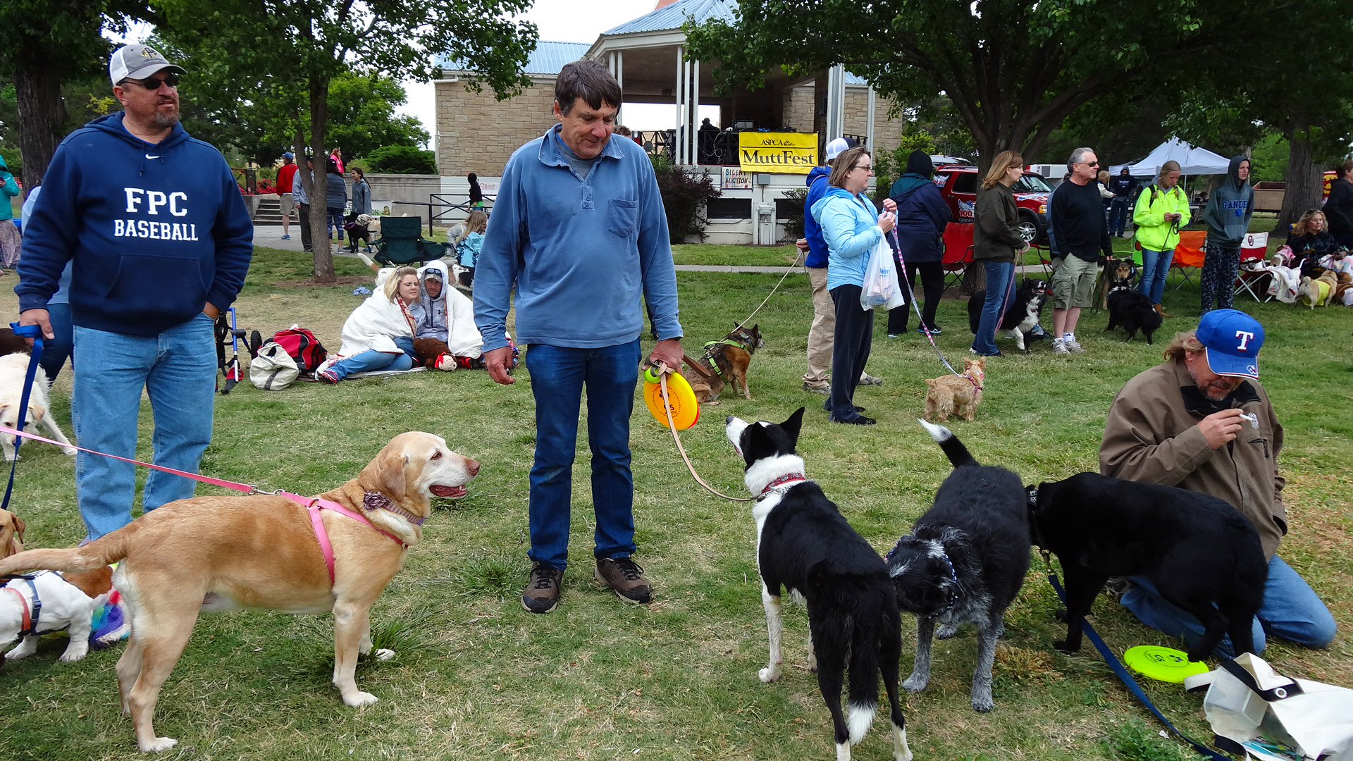 Amarillo's going to the dogs again with annual Muttfest celebration