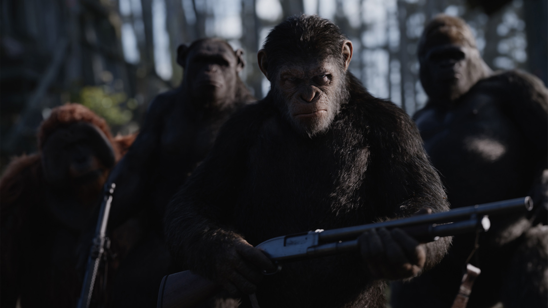 Movie Watch: Amarillo film options for July 13 to 20, plus reviews of 'Spider-Man,' 'Apes'