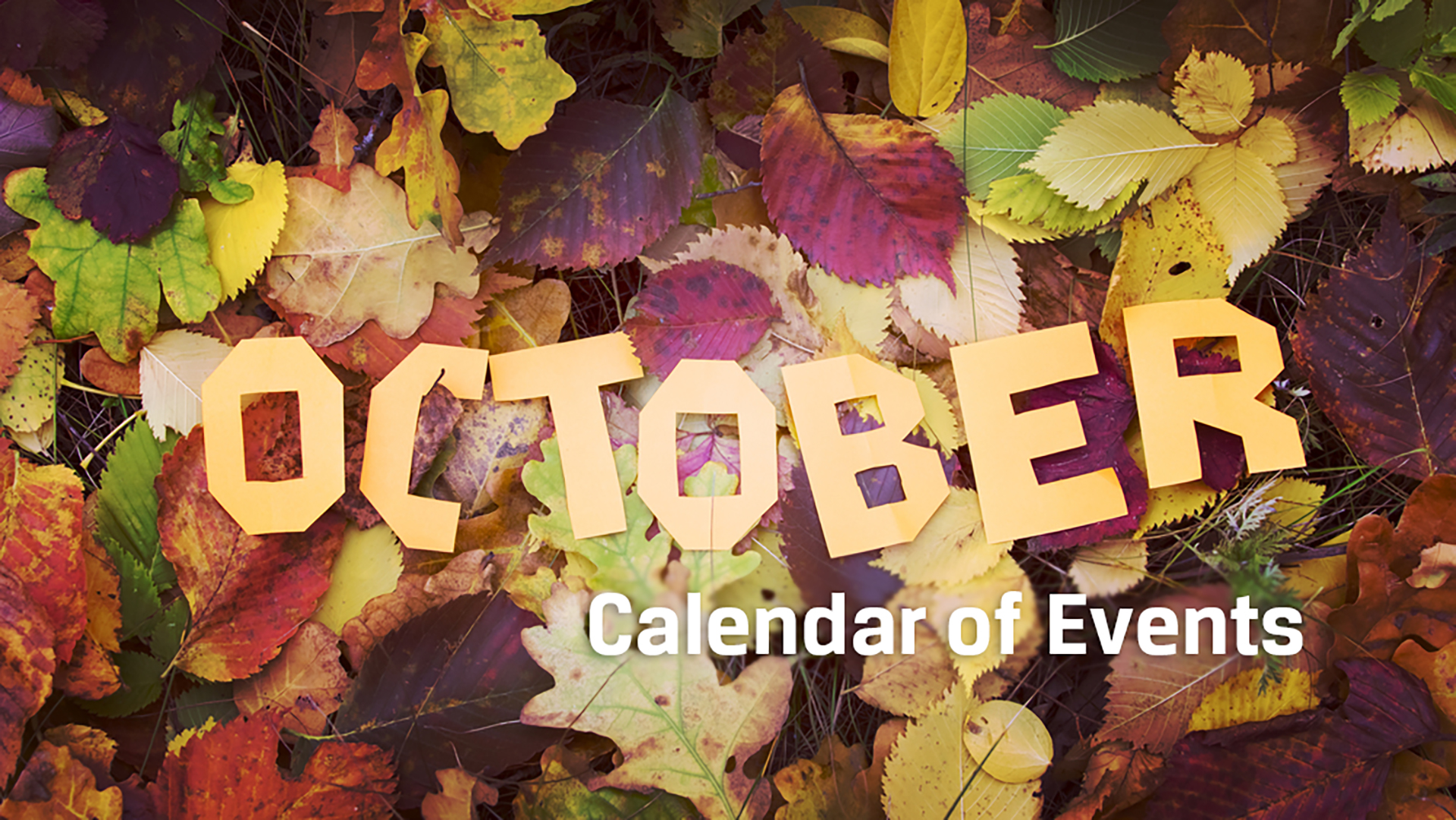 October entertainment calendar: Comprehensive guide to Halloween, concerts, arts productions and more