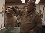 Woodworker James Mellick crafts a special collection of wounded warrior dogs at his Union County, Ohio workshop