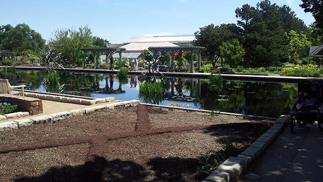 James Surls sculptures installed in a reflecting pool at Denver Botanic Gardens