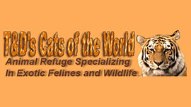 T&D's Cats of the World-Wild Animal Refuge