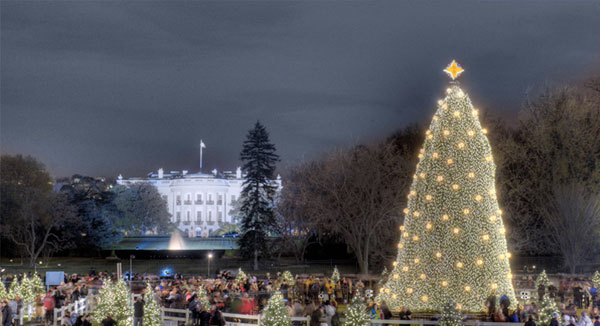 The National Christmas Tree Lighting - Dec. 14 at 10:00 p.m.