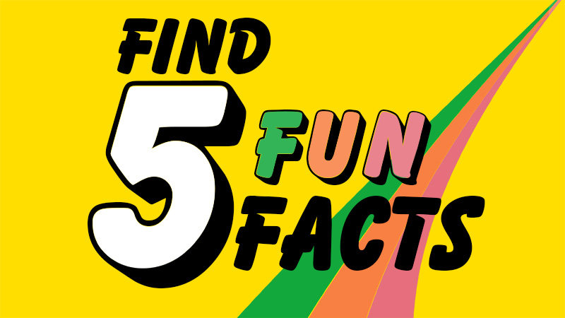 Find 5 Fun Facts
