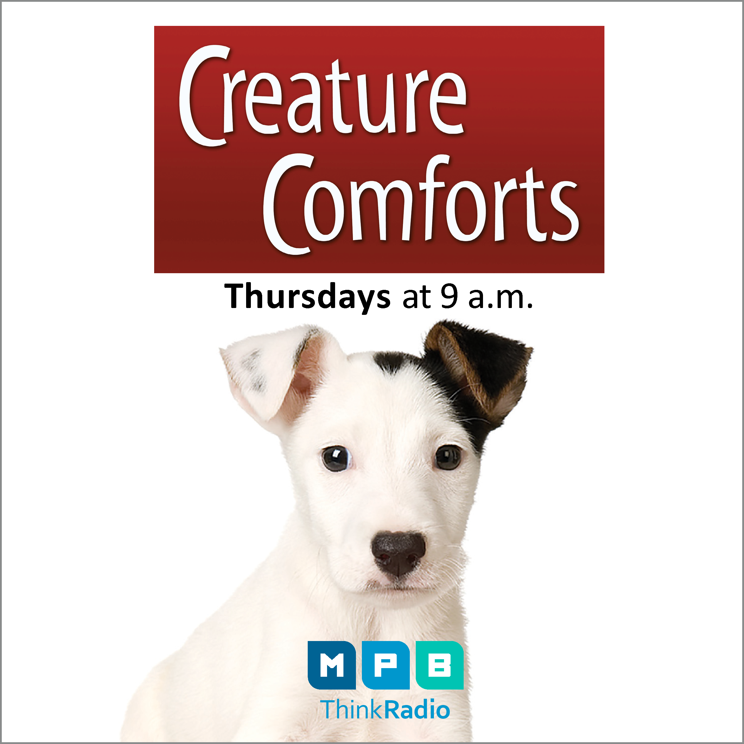 Listen to Creature Comforts every Thursday at 9 a.m. on MPB Think Radio