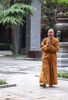 Monk wearing orange robe