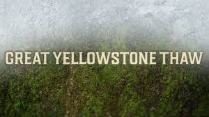 Great Yellowstone Thaw: Wednesdays at 9 p.m.