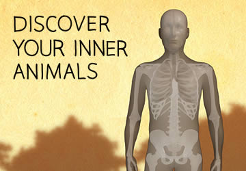 Explore Your Inner Animals