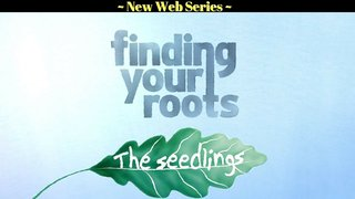 Finding Your Roots - The Seedlings
